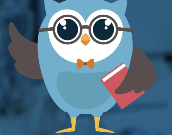 irvine adult transition program mascot