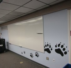 Bear Paw Graphic wall